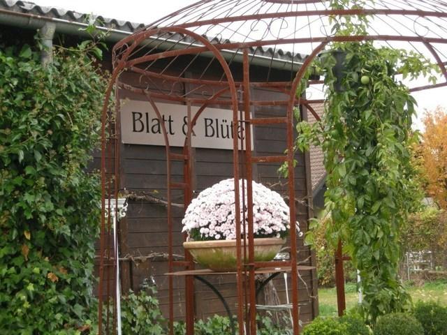 Blatt_und_Bluete.JPG